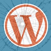 Tvorba web stránok wordpress si vyžaduje čas